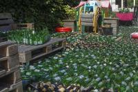 Echtpaar 3420 lege bierflesjes als huwelijkscadeau