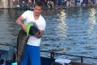 Jongen vangt Meerval in Amsterdamse grachten